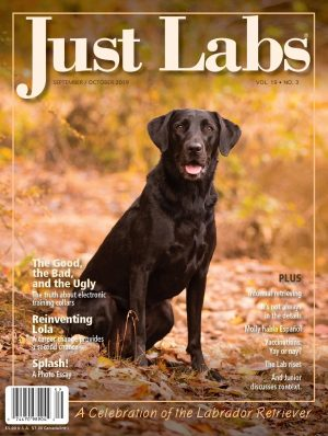 Just Labs September/October